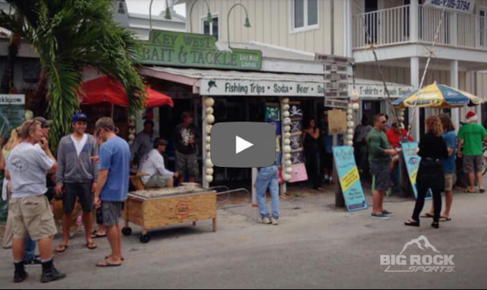Dealer Insights Video